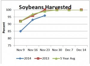 Nov 24 Soybeans