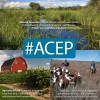 ACEP Graphic