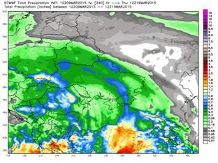 ecmwf_tprecip_ukraine_41