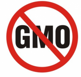 gmo labeling speech Support legislation that requires gmo labeling contact elected officials and voice concerns about regulation and.
